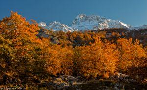 mountain-7.jpg